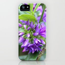 Purple Paradise iPhone Case