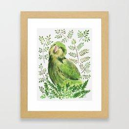 Kakapo in the ferns Framed Art Print