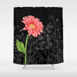 Gerbera Daisy #3 Shower Curtain