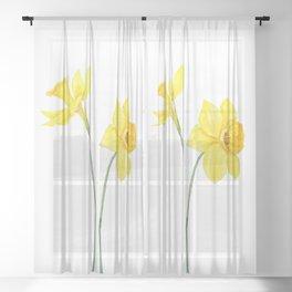 two botanical yellow daffodils watercolor Sheer Curtain