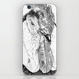 Rooster II iPhone Skin