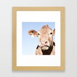 Holy cow Framed Art Print