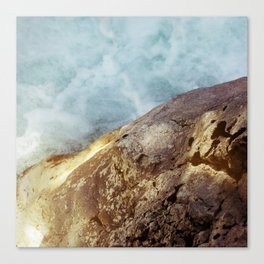 Nature #7 Canvas Print