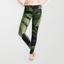Monstera - Tropical Forest - nature photography Leggings