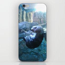 Through Glass :: Otter iPhone Skin
