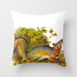 Grey Fox Illustration Throw Pillow