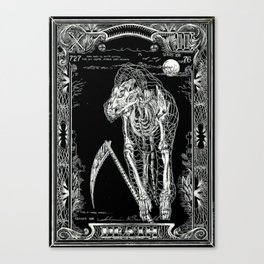 DEATH of Tarot Cat Canvas Print