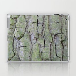 Tree Hugger Laptop & iPad Skin