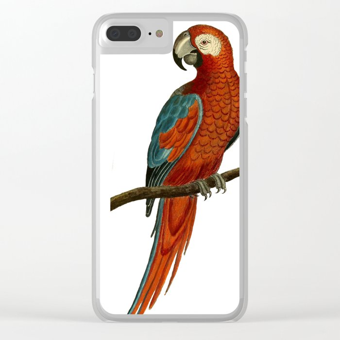 Parrot perroquet Clear iPhone Case