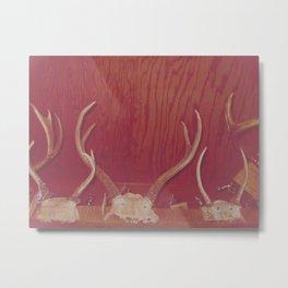 Great Grandpa's Antlers Metal Print