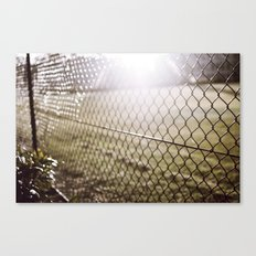 the evening sunrays  Canvas Print