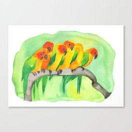 Parrots In A Row Canvas Print