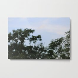 sky plants blur Metal Print