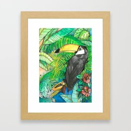Toucan with mamão, Viva la Vida Framed Art Print