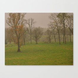 The Grove Canvas Print