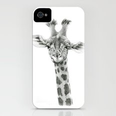 Young Giraffe  G2012-053 iPhone (4, 4s) Slim Case