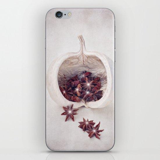 WINTER SECRETS iPhone & iPod Skin