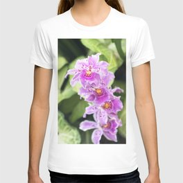 Longwood Gardens Orchid Extravaganza 61 T-shirt