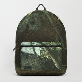 Vintage ruins gard Backpack