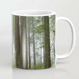 Foggy Forest Trail Coffee Mug