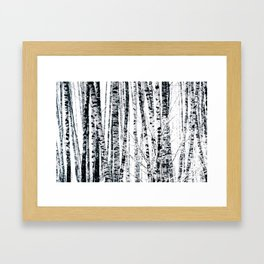 Birch Trees In Winter Framed Art Print