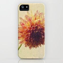 Small Grandness iPhone Case
