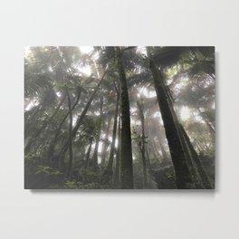 Tropical Jungle - Palm Trees Metal Print