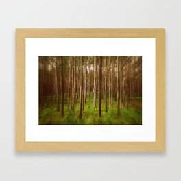 Forest Magic Framed Art Print