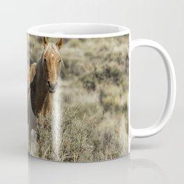 South Steens Stallion Coffee Mug