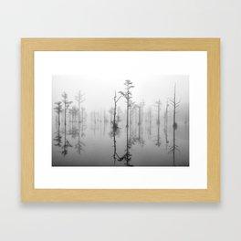 Goodale 2015 12 B&W Framed Art Print