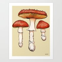 mushrooms Art Prints featuring Mushrooms by CHAR ODEN