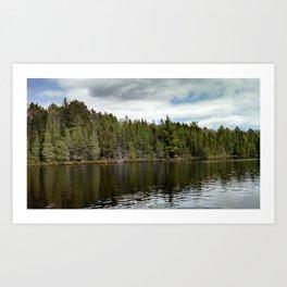 Northern Woods Art Print