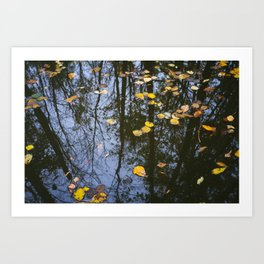 Rest and Reflect Art Print