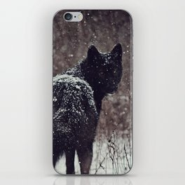 Snow Covered iPhone Skin
