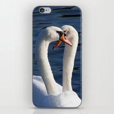 Courting Swans  iPhone & iPod Skin