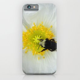 White Iceland Poppy iPhone Case