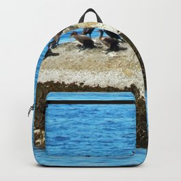 Cormorants Basking on The Big Rock Backpack