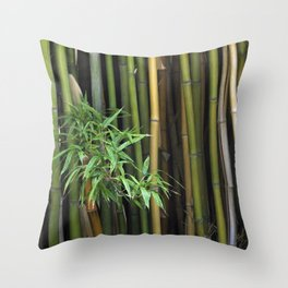 Bamboo Branch Canes Background Exotic Plants Throw Pillow