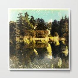 Water Field Metal Print