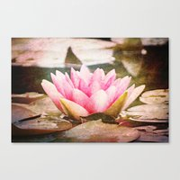 lotus flower Canvas Prints featuring Lotus by Around the Island (Robin Epstein)