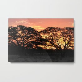 Beautiful Africa Sunset with Silhouette Acacia Trees Metal Print