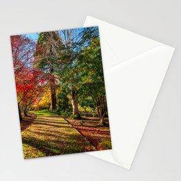 Autumn Sunlight Stationery Cards