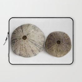 Sea Urchin Shells Laptop Sleeve