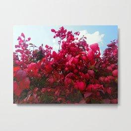 Foliage 6 Metal Print