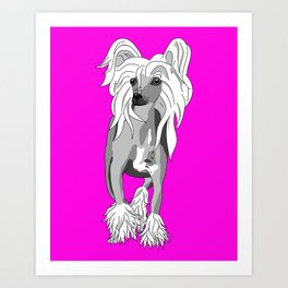 Sassy Chinese Crested Art Print