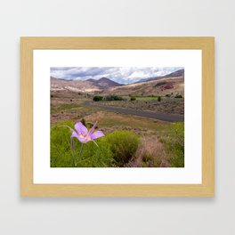Mariposa Lily standing tall over John Day Fossil Beds Framed Art Print