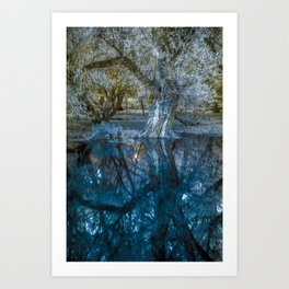 Budapest and the Danube Art Print