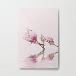 Magnolia And Calm Waters Metal Print