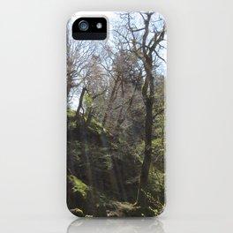 Leafy Forest Bridge iPhone Case