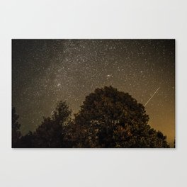 Starry Night Sky 2 Canvas Print